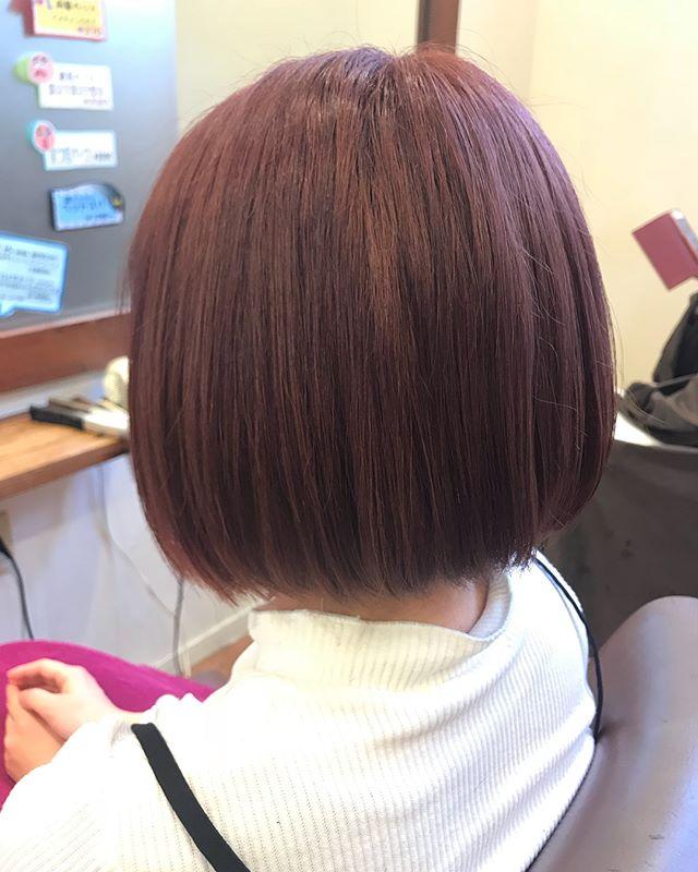 cut + color  1回ブリーチからのピンクon! 春らしくて可愛いです 暖かくなってきたのでハイトーンカラー増えてます!!!透明感抜群ですね
