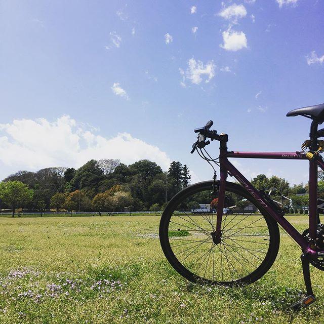 この前の休日に近場サイクリングして公園でのんびり☆ 良い休日でした(^ ^)